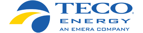 Tampa Electric bill pay